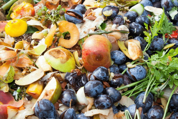 The Effects Of Food Waste